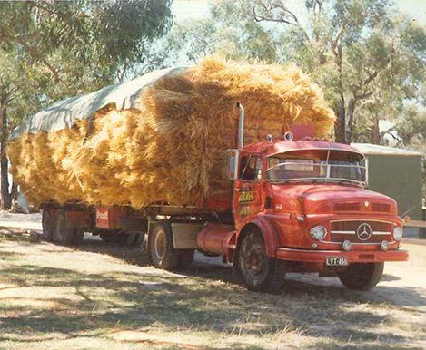 2-photos-timber-transport